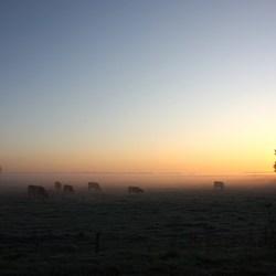 Mooie herfst ochtend in Brabant