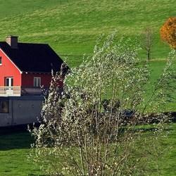 Herfst in Limburg
