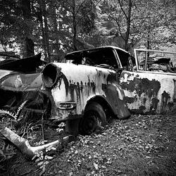 Car Graveyard 13