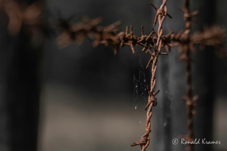 kamp Westerbork 3 - Een klein deel van de afrastering van kamp Westerbork