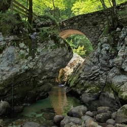 Bruggetje over beek, Ukanc, Slovenië
