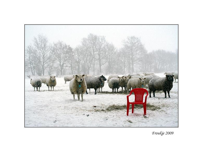 de stoel  - Op fotocursus hebben we opdracht allemaal een fotoserie te maken het hele seizoen door ,ik heb gekozen iets onnatuurlijks in de natuur .Du