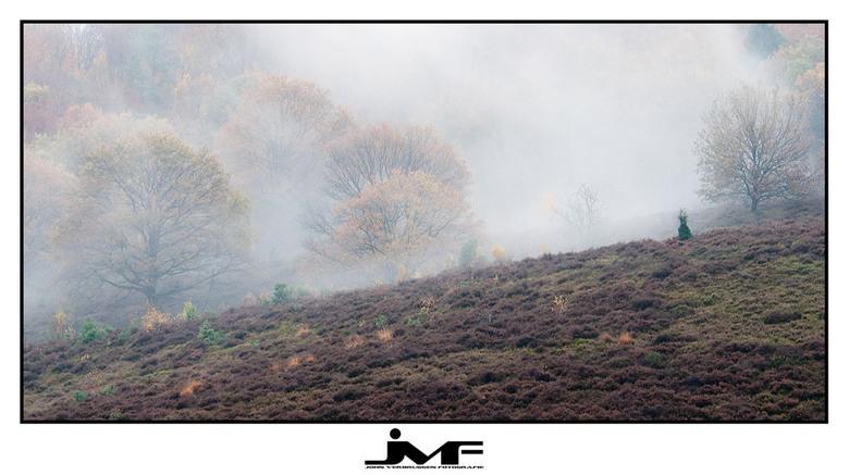 """Season of colors (4) - Locatie: NP Veluwezoom / Posbank<br /> <br /> Afgelopen maandagmorgen al vroeg op pad met collega-Zoomer Fali <img  src=""""/ima"""