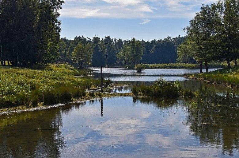 Ven - Eén van de vennen in Boswachterij Dorst.<br /> Links ligt het eilandje van de vorige foto.