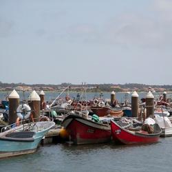 Vissersboten in Aveiro