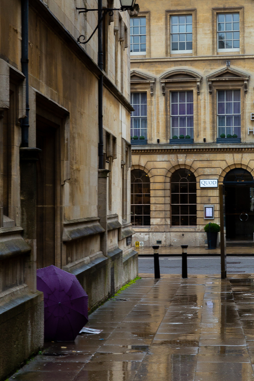 paarse paraplu - een eenzame zwerver, verstopt achter zijn paarse paraplu