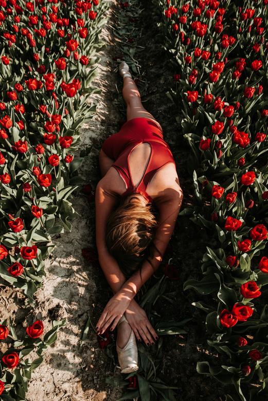 Loes - Ballerina: Loes<br /> <br /> P.S. We zijn netjes met de tulpen omgegaan.