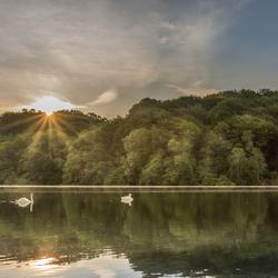 Cranenweyer zonnenstralen