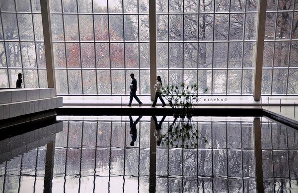 spiegelbeeld - metropolitan museum in new york