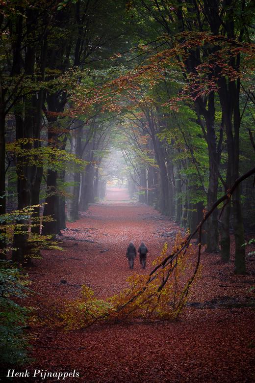 Beautiful Seasons  - In vroege morgen nog twijfels om op pad te gaan, maar gestopt met twijfelen...