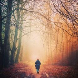 Wie durft te verdwalen vindt nieuwe wegen