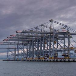 Kranen RWG terminals Maasvlakte 2