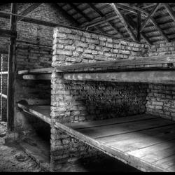 barakken in Birkenau_Auschwitz-Birkenau