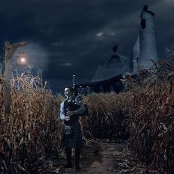 Piper in the Corn