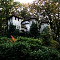 Een kasteel in het bos.
