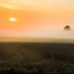 Gekleurde mist