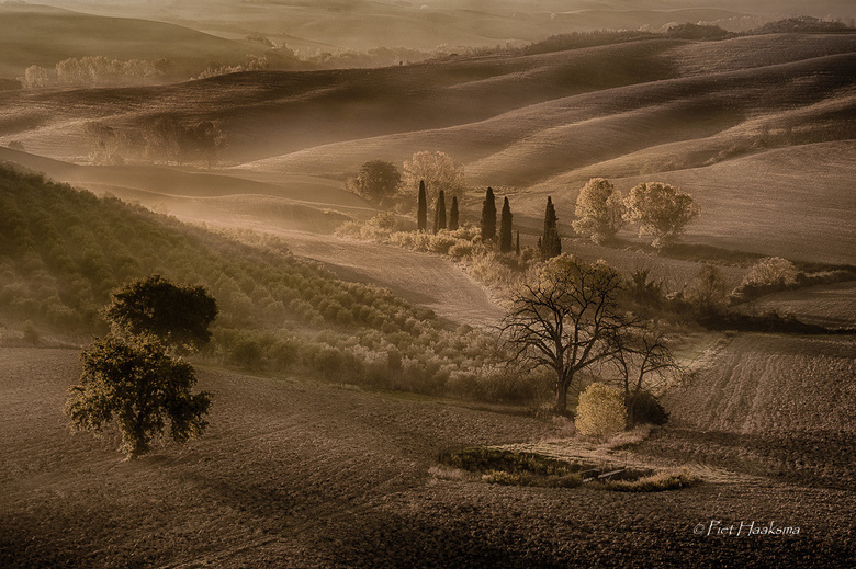 Toscane.........