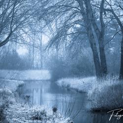 Koude winterochtend bij de Watermolenbeek (Roosendaal)