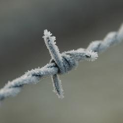 prikkeldraad met sneeuw