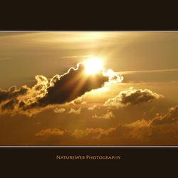 De heerlijke zon