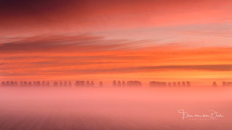 """Morning Glory - Wat een perfecte combinatie vind ik dat, mist en een gekleurde lucht. <img  src=""""/images/smileys/smile.png""""/> Genieten!"""