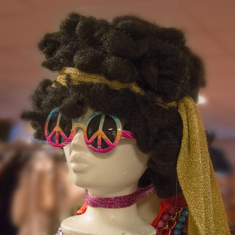 happy hippy  - pruik  en accessoires, Terschuur Kledingverhuur; met dank!
