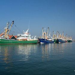 Vissersschepen haven Oudeschild op Texel I.
