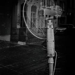 warmterecord november 2020