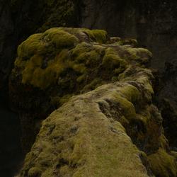 bemoste rots in ijsland (lijkt haast op een draken kop)