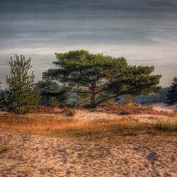 Soester duinen HDR 1