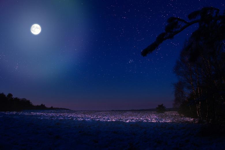 Moonlight -