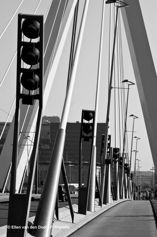 Erasmus brug - Erasmus brug in Rotterdam. Genomen tijdens de World Wide Photo Walk in 2011.