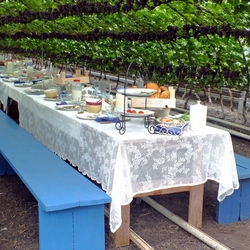 Druivenkas met tafel, speciaal voor jou JOS