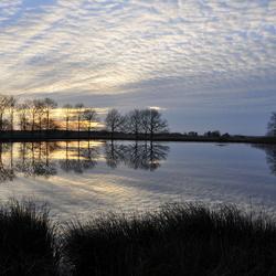 Dwingelerveld 4 20104