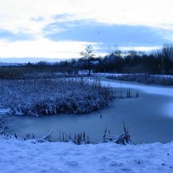 sneeuwlandschap in de schemering