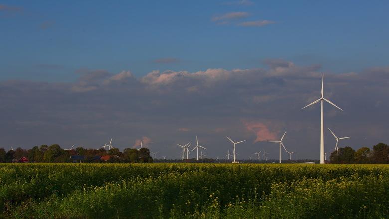 Flevoland - De windmolens schieten hier als paddenstoelen uit de grond.