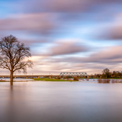 Hoog water aan de IJssel