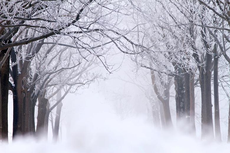 """Road to Nowhere - Zeer vroeg &amp; zeer koud ochtendje...<br /> Meer Zin &amp; Onzin over de winter van 2012: <a href=""""http://roeselien.wordpress.com"""