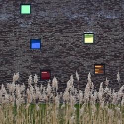 Color of windows