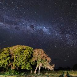 Melkweg boven Pantanal