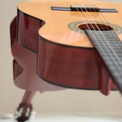 gitaar  (23)