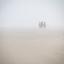 Ruiters in de mist