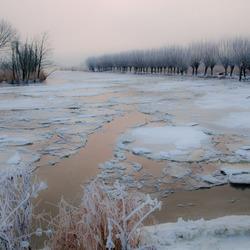 Dordtsche Oosthaven in winterlook