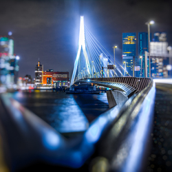Rotterdam Railings