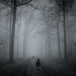 In het bos...