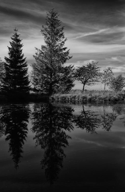 Spiegeling -