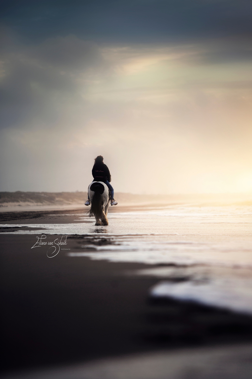 A day at the beach @ horse  - A day at the beach<br />