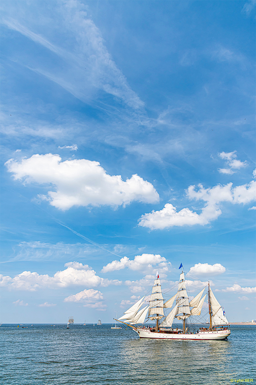 Tall Ship Regatta 2019 - Tall Ship Regatta 2019 @Scheveningen