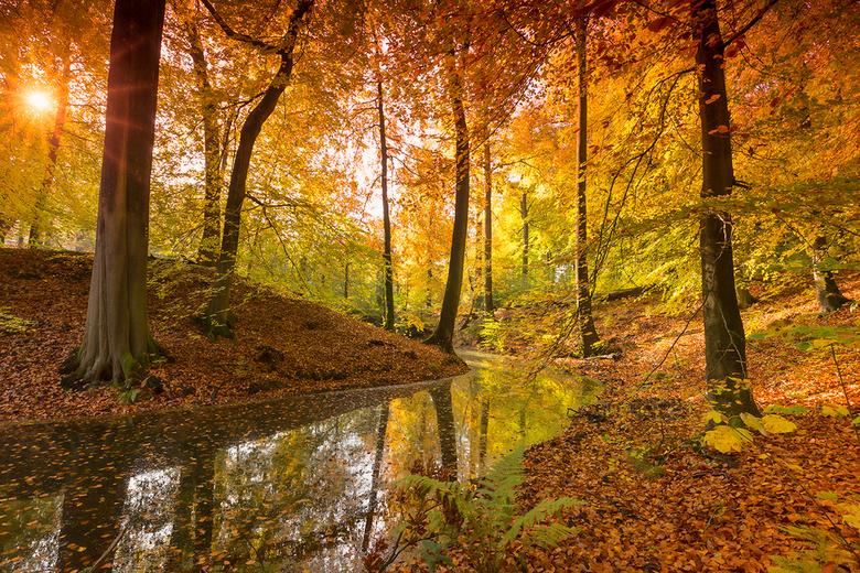 Herfst in Beekhuizen