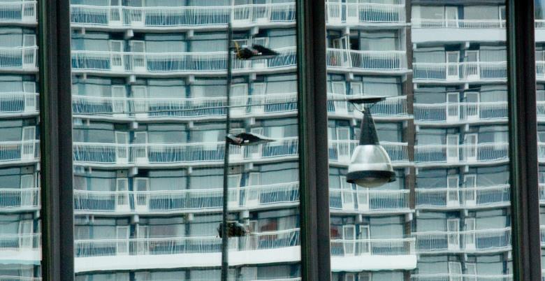Appartementen - Reflectie van een appartementen complex